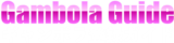 ギャンボラ登録ガイド